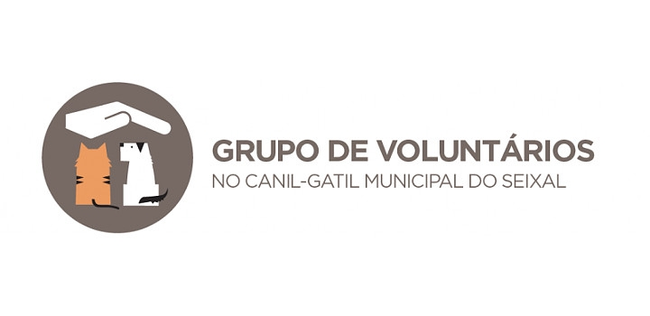 Grupo de voluntários no canil-gatil municipal do Seixal